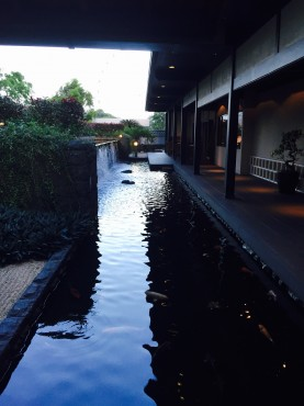 欅keyaki5