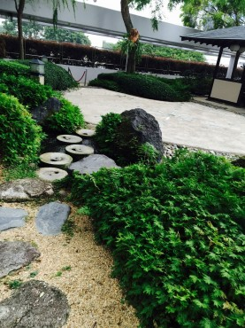 欅keyaki8